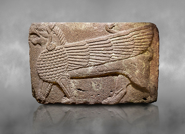 Phrygian relief sculpted orthostat stone panel Andesite, Atateirk Orman ciftligi, Ankara, 12OO-700 B.C. Anatolian Civilisations Museum, Ankara, Turkey.<br /> <br /> Winged griffin with a bird's head and a lion's body. There is a bird's head at the end of its tail. The chest was processed like fish scales. Its wing extends along the body. Muscles in its legs are schematic. <br /> <br /> Against a grey art background.