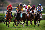 Turf Racing action at Del Mar Race Course in Del Mar, California on August 5, 2012.