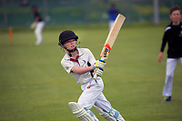 201121 Cricket - Wellington Junior Cricket
