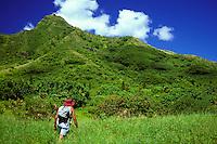Hiker on windward side of Oahu