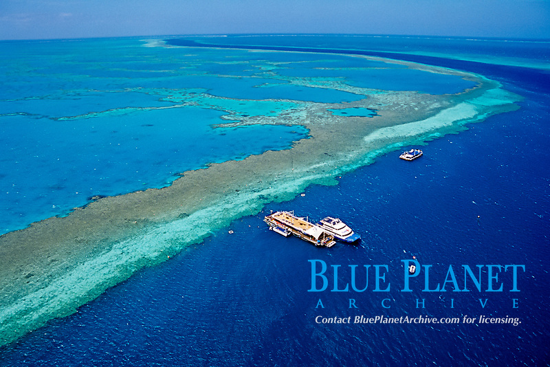 aerial, Hardy Reef, Great Barrier Reef, Queensland, Australia