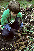 HS05-011z  Boy harvesting potatoes