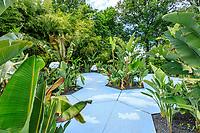 """France, Loir-et-Cher (41), Chaumont-sur-Loire, domaine de Chaumont-sur-Loire et festival international des jardins 2019, thème, Jardins de Paradis, jardin """"Tous les Strelitzias vont au paradis"""", Italie / Naretto, Otella & Cosmai"""