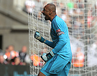 Heurelho Gomes of Watford celebrates the opening goal scored by his team mate Andre Gray during the Premier League match between Swansea City and Watford at The Liberty Stadium, Swansea, Wales, UK. Saturday 23 September 2017