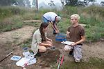 Charles Dow, Becca Settele & Ben Thyng Processing Diamondback Turtles