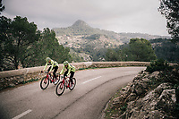 Edward THEUNS (BEL/Trek-Segafredo) & Matteo MOSCHETTI (ITA/Trek-Segafredo)<br /> <br /> Team Trek-Segafredo men's team<br /> training camp<br /> Mallorca, january 2019<br /> <br /> ©kramon