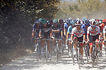 The peloton on the dusty Tuscan tracks during the 2020 Strade Bianche Elite Men running 184km from Fortezza Medicea Siena to Piazza del Campo Siena, Italy. 1st August 2020.<br /> Picture: Bora-Hansgrohe/Luca Bettini/BettiniPhoto | Cyclefile<br /> <br /> All photos usage must carry mandatory copyright credit (© Cyclefile | Bora-Hansgrohe/Luca Bettini/BettiniPhoto)