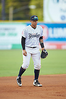 Pulaski Yankees third baseman Nelson Gomez (14) on defense against the Greeneville Reds at Calfee Park on June 23, 2018 in Pulaski, Virginia. The Reds defeated the Yankees 6-5.  (Brian Westerholt/Four Seam Images)