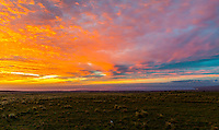 Colorful winter sunset as seen from a cow pasture on the road to Waimea, Big Island.