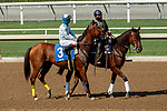 ARCADIA, CA  SEP 25: #3 Into Chocolate, ridden by Umberto Rispoli, in the post parade of the Chillingworth Stakes (Grade lll) on September 25, 2020 at Santa Anita Park in Arcadia, CA.  (Photo by Casey Phillips/Eclipse Sportswire/CSM.