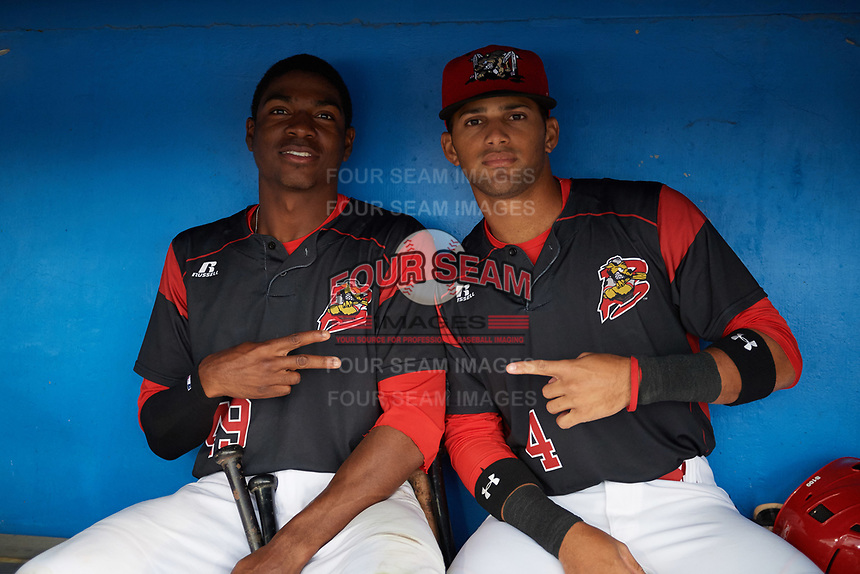 Batavia Muckdogs Thomas Jones (49) and J.C. Millan (4) in the dugout during a rain delay during a game against the West Virginia Black Bears on June 24, 2017 at Dwyer Stadium in Batavia, New York.  The game was suspended in the bottom of the third inning and completed on June 25th with West Virginia defeating Batavia 6-4.  (Mike Janes/Four Seam Images)