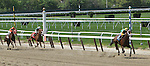 May 11, 2014:Palace Malice with John Velazquez wins the Grade III Westchester Stakes, 4-year olds & up, going 1 mile at Belmont Park. Trainer: Todd Pletcher . Owner: Dogwood Stables . Sue Kawczynski/ESW/CSM