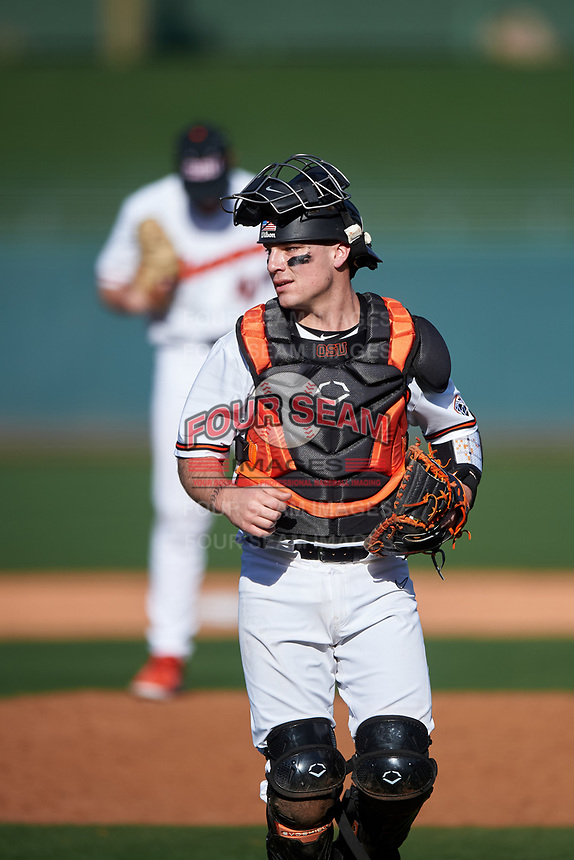 Oregon State Beavers catcher Cole Hamilton (14) during an NCAA game against the New Mexico Lobos at Surprise Stadium on February 14, 2020 in Surprise, Arizona. (Zachary Lucy / Four Seam Images)