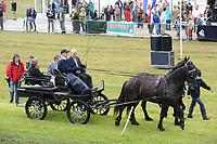 PAARDENSPORT: JOURE: 2009, Nutsbaan, Swipedei draf en ren vereniging, ©foto Martin de Jong