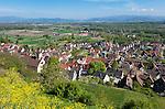 Germany, Baden-Wuerttemberg, Wasenweiler at Kaiserstuhl: wine village | Deutschland, Baden-Wuerttemberg, Kaiserstuhl, Wasenweiler: bekannter Weinbauort
