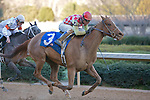 21 February 2009: Palanka City with jockey Chris Emigh sucessfully fights off Rated Fiesty before winning the Spring Fever stakes race at Oaklawn in Hot Springs, Arkansas