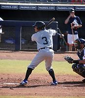 Freddy Fermin - Salt River Rafters - 2019 Arizona Fall League (Bill Mitchell)
