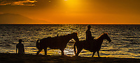 Oceanscape photograph of horses on the beach in Puerto Vallarta Mexico.