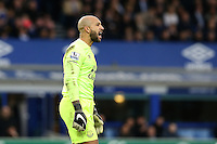 Tim Howard shouts out during the Barclays Premier League match between Everton and Swansea City played at Goodison Park, Liverpool