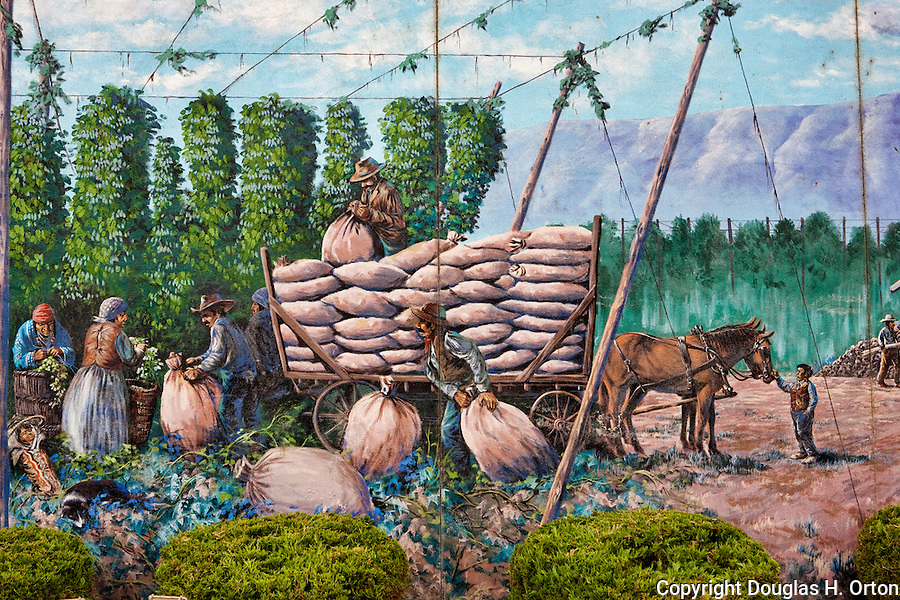 "Toppenish, the City of Murals, in Washington State's Yakima Valley, with 300 days of sunshine per year sports some of the finest vineyards in the state. Mural, ""When Hops Were Picked by Hand (partial)"", by Robert Thomas.  Nearby  Rattlesnake Hills AVA shares hillsides and valley with traditional orchard crops."