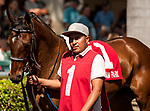 HALLANDALE BEACH, FL - March 3: Princess Warrior, #1, readies for battle against the big girls on the turf for trainer Kenny McPeek in the Grade III Herecomesthebride Stakes at Gulfstream on March 3, 2018 in Hallandale Beach, FL. (Photo by Carson Dennis/Eclipse Sportswire/Getty Images.)