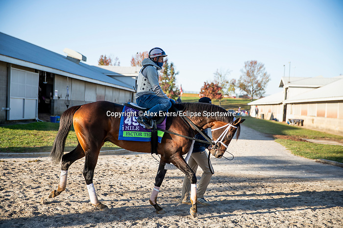 November 3, 2020: Factor This, trained by trainer Brad Cox, exercises in preparation for the Breeders' Cup Mile at Keeneland Racetrack in Lexington, Kentucky on November 3, 2020. Alex Evers/Eclipse Sportswire/Breeders Cup
