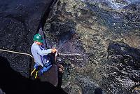 Keith Robinson feeds an eel in shallow waters of Niihau, Hawaii