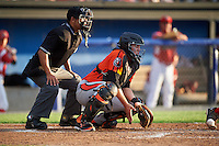 Umpire Jhonatan Biarreta and Aberdeen IronBirds catcher Jerry McClanahan (19) during a game against the Batavia Muckdogs on July 15, 2016 at Dwyer Stadium in Batavia, New York.  Aberdeen defeated Batavia 4-2.  (Mike Janes/Four Seam Images)