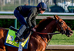 LOUISVILLE, KENTUCKY - APRIL 27: Plus Que Parfait, trained by Brendan Walsh, exercises in preparation for the Kentucky Derby at Churchill Downs in Louisville, Kentucky on April 27, 2019. Scott Serio/Eclipse Sportswire/CSM