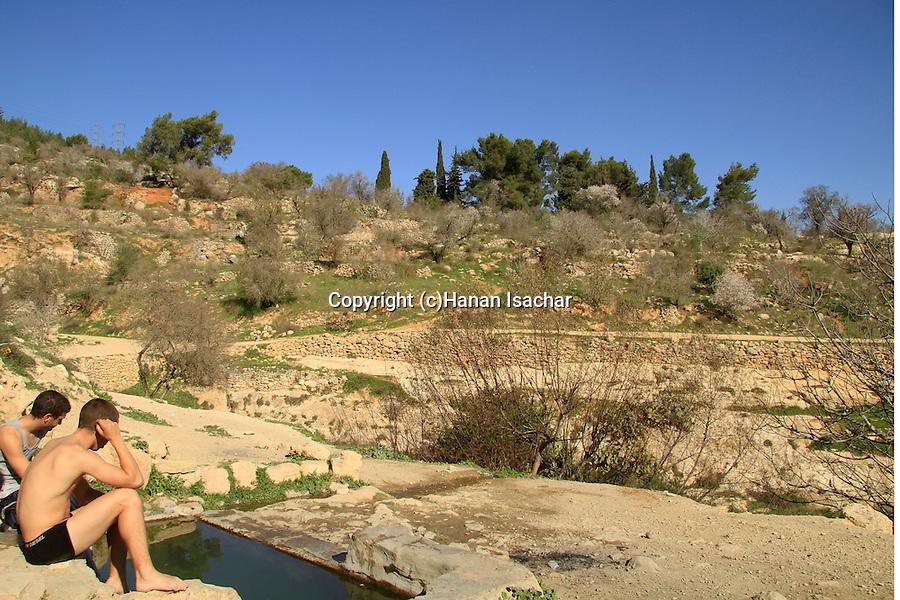 Israel, Ein Al Balad in Jerusalem Mountains