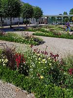 Blumengarten in Großer Garten der barocken Herrenhäuser Gärten, Hannover, Niedersachsen, Deutschland, Europa<br /> flower garden in Great Garden of baroque Herrenhausen Gardens, Hanover, Lower Saxony, Germany, Europe