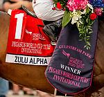 January 25, 2020: Zulu Alpha #1, ridden by Tyler Gaffalione, wins the Pegasus World Cup Invitational Turf during the Pegasus World Cup Invitational at Gulfstream Park Race Track in Hallandale Beach, Florida. Scott Serio/Eclipse Sportswire/CSM