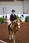 H12T. Future Novice Equitation on the flat – Section A – TEAM
