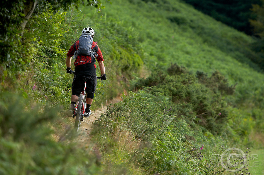 Twrch Trail , CwmCarn , Wales ..July 2010 ..pic copyright Steve Behr / Stockfile