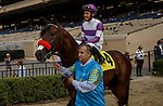 DEL MAR, CA  AUGUST 29: #4 Team Merchants ridden by Mario Gutierrez,, in the post parade of the Shared Belief Stakes on August 29, 2021 at Del Mar Thoroughbred Club in Del Mar, CA. (Photo by Casey Phillips/Eclipse Sportswire/CSM)