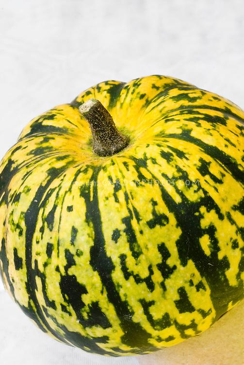 Squash vegetable Sweet Dumpling, winter squash yellow with green stripes