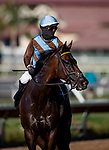Jo Jo Air with Flavien Prat wins the Daisycutter Stakes at Del Mar, in Del Mar Ca, July 24, 2020. (Photo: Alex Evers)