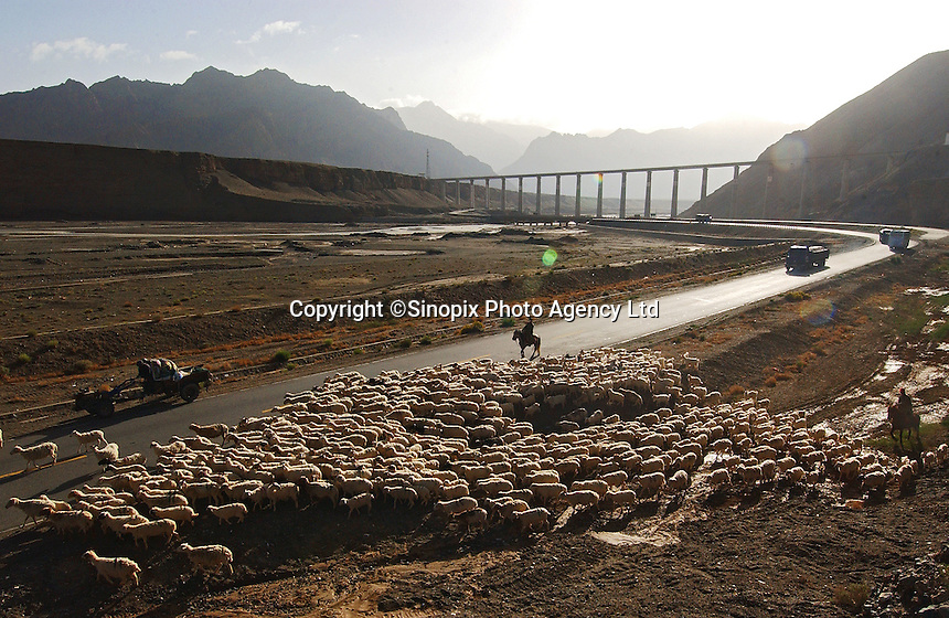 At the Kunlun Pass of Tibet Railway in Qinghai province, China, old meets new as Tibetan herders move their flock before the San Pan River Grand Bridge in Qinghai's Kunlun mountains. The bridge is the Tibet railway's tallest bridge at 46m above the ground. Reaching 5,072m above sea level, the railway is the world's highest..08 Jul 2006