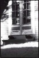 Cats sitting by door<br />
