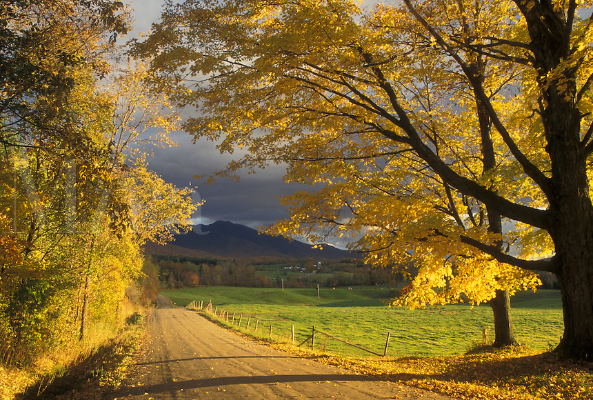 AJ4521, fall, road, autumn, Vermont, Scenic view of the countryside along a country road in the fall in Pleasant Valley in Cambridge in Lamoille County in the state of Vermont. View of Mount Mansfield in the background.