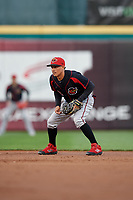 Rochester Red Wings shortstop Ronald Torreyes (2) during an International League game against the Buffalo Bisons on August 26, 2019 at Sahlen Field in Buffalo, New York.  Buffalo defeated Rochester 5-4.  (Mike Janes/Four Seam Images)