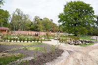 BNPS.co.uk (01202) 558833. <br /> Pic: CorinMesser/BNPS<br /> <br /> Carey Secret Garden. <br /> <br /> The new owners of a historic country estate have discovered an overgrown secret garden that had lain untouched and forgotten for more than 40 years.<br /> Simon Constantine was astounded when he and his children went off exploring the grounds of Carey House near Wareham, Dorset, and found the 'lost' walled garden behind a padlocked gate.<br /> The 3.5 acre plot was built 140 years ago and would have at one stage served both the estate and the wider community with fresh fruit, vegetables and cut flowers back in the day.