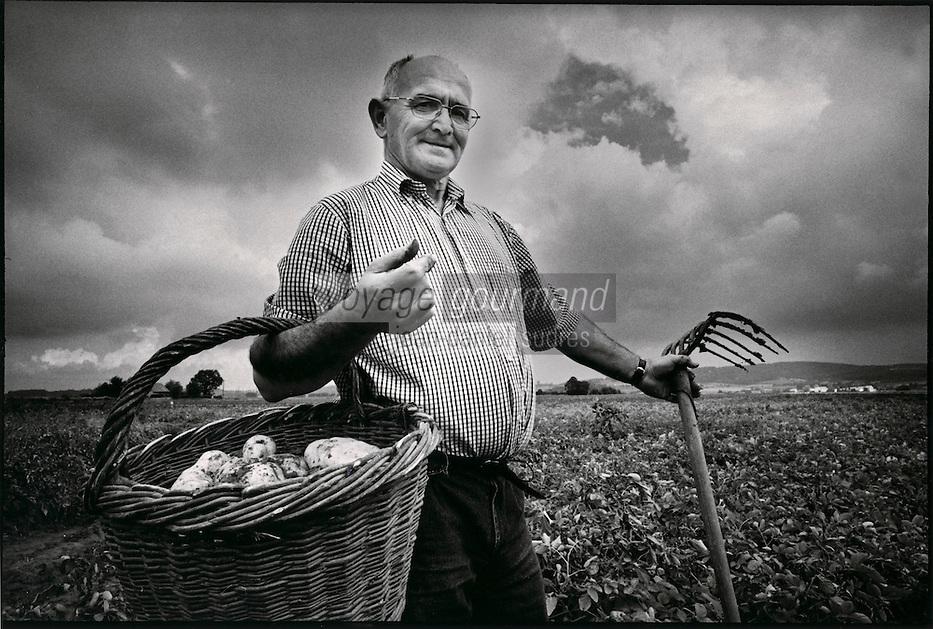 Europe/France/Nord-Pas-de-Calais/59/Nord/Meteren: Bernard Asseman récolte ses pommes de terre