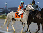 November 28, 2015 Conquest Big E (Shaun Bridgmohan) wins a one mile allowance race for two year olds at Churchill Downs. Owner Conquest Stables LLC (Ernie Semersky and Dory Newell), trainer Mark E. Casse. By Tapit x Seeinsbelieven (Carson City.)  ©Mary M. Meek/ESW/CSM