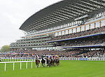 Royal Diamond (no. 7), ridden by Johnny Murtagh and trained by Johnny Murtagh, wins the group 3 British Champions Long Distance Cup for three year olds and upward on October 19, 2013 at Ascot Racecourse in Ascot, Berkshire, United Kingdom.  (Bob Mayberger/Eclipse Sportswire)