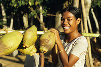 INDIA Little Andaman, Nicobarese woman carry coconuts / INDIEN Little Andaman, Nikobaresen Frau traegt Kokosnuesse