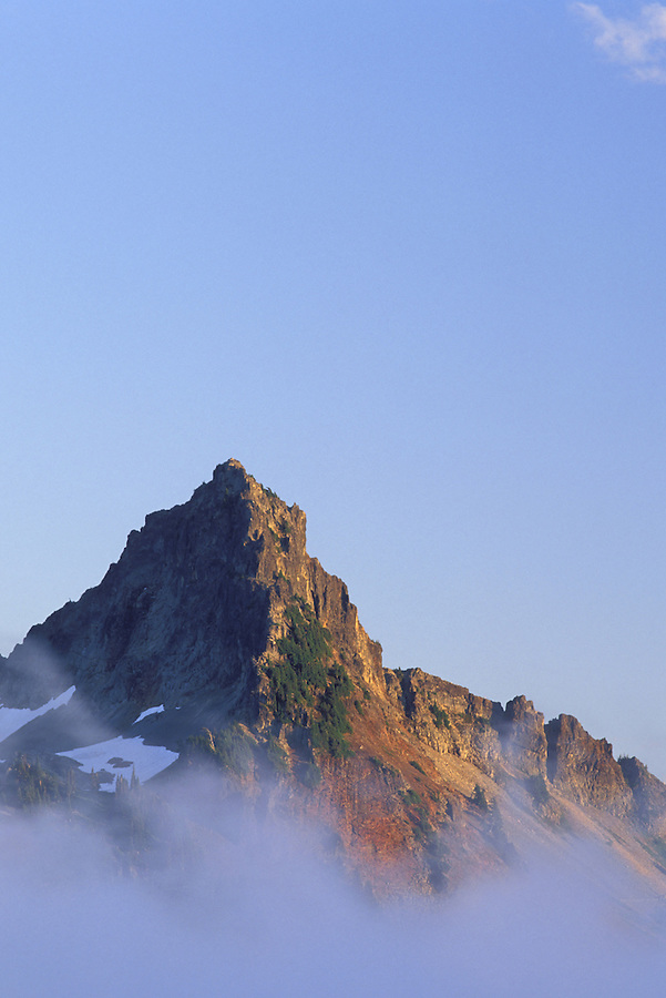 Pinnacle Peak above fog, Paradise, Mount Rainier National Park, Cascade Mountains, Washington