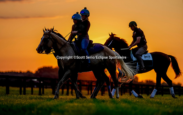November 8, 2021: Scenes from the Eclipse Sportswire Photo Workshop at Kentucky Downs in Franklin, Kentucky, photo by Scott Serio/Eclipse Sportswire Photo Workshop