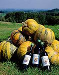 Austria, Styria, bottled pumpkin-seed oil, pumpkins