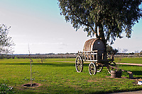 An old horse drawn carriage cart with an old wooden barrel in the garden in front of the vineyard. Bodega Juanico Familia Deicas Winery, Juanico, Canelones, Uruguay, South America